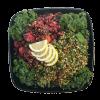 Salad Platter.png